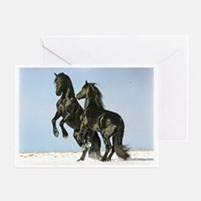 Friesian Stallions Greeting Card