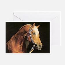 Arabian Barb Greeting Card