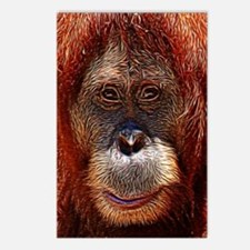 Orangutans Postcards (Package of 8)