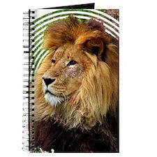 Lions Journal