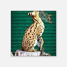 "Servals Square Sticker 3"" x 3"""