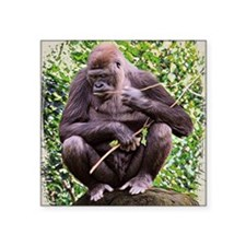 """Gorillas Square Sticker 3"""" x 3"""""""