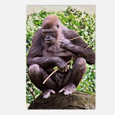 Gorillas Postcards (Package of 8)
