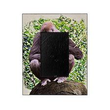 Gorillas Picture Frame