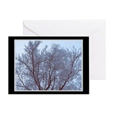 Pale Frost Holiday Card
