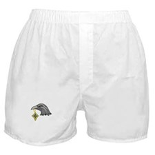 RAVEN AND CELTIC CROSS Boxer Shorts