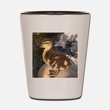 Ducks Shot Glass