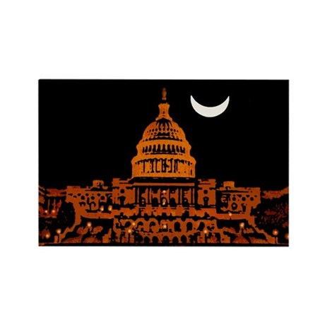 Moonrise Over DC Rectangle Magnet (10 pack)