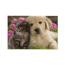 Cute Cat dog Rectangle Magnet (10 pack)