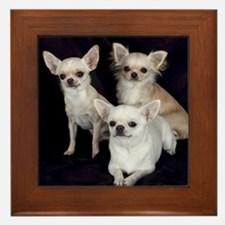 Adorable Chihuahuas Framed Tile