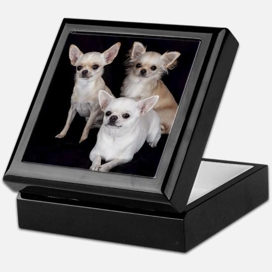 Adorable Chihuahuas Keepsake Box