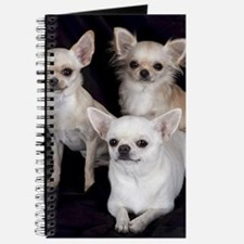 Adorable Chihuahuas Journal