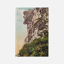 Old Man Of The Mountains Rectangle Magnet Magnets