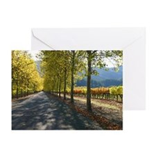 autumn trees vineyard hills greeting cards (6)