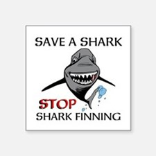 Stop Shark Finning Sticker