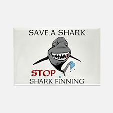 Stop Shark Finning Magnets