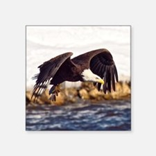 Soaring on the Wings of an Eagle Sticker