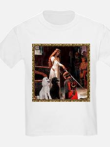 TILE-Accolade-framed-PoodleSTPR T-Shirt