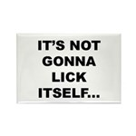 It's not gonna lick itself... Magnet (10 pack)