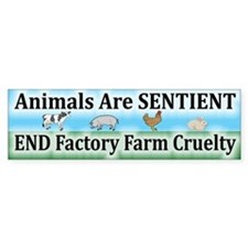 End Factory Farm Cruelty - Bumper Bumper Sticker