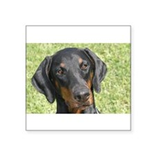 "Cute Dobie Square Sticker 3"" x 3"""