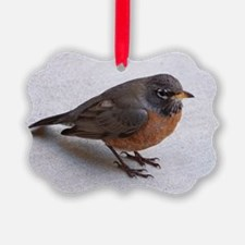 Robin Ornament