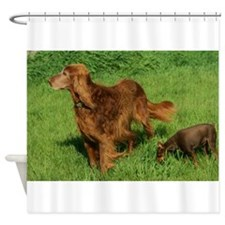 Conley and Tiny Bubbles Shower Curtain