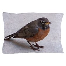 Robin Pillow Case