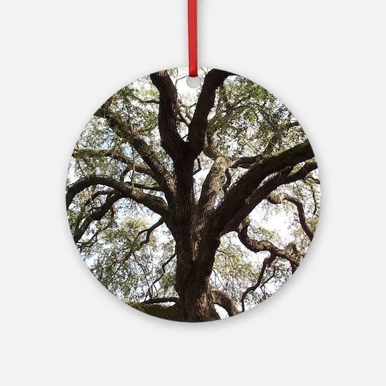 Savannah Oak Round Ornament