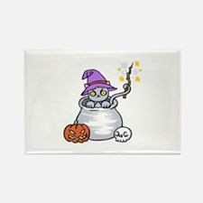 CAT IN CAULDRON Magnets