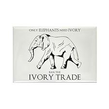 Elephant Ivory Magnets