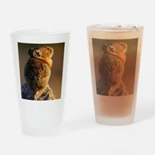 Sunset Pika Drinking Glass