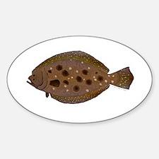 Summer Flounder Decal