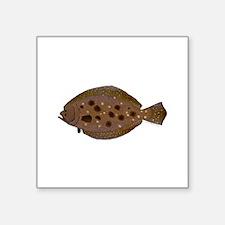 Summer Flounder Sticker