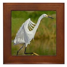 Elegant Dancing Framed Tile