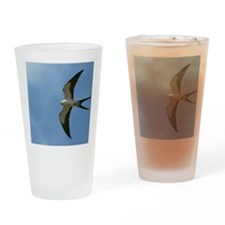 Swallow-tailed Kite Drinking Glass