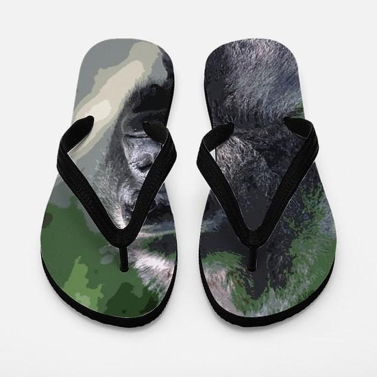 Unique Primate Flip Flops