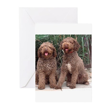 Spanish Water Dogs Ikee & Indy Greeting Cards (Pac
