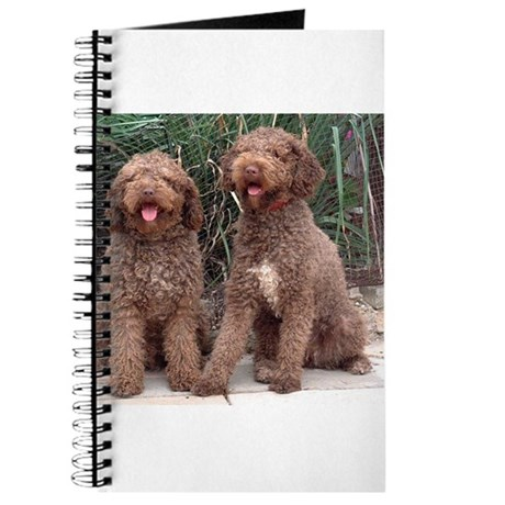 Spanish Water Dogs Ikee & Indy Journal