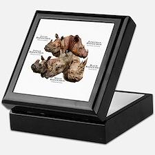 Rhinos of the World Keepsake Box
