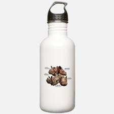 Rhinos of the World Water Bottle