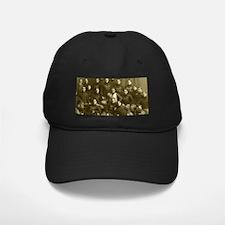 1899 Michigan Wolverines Baseball Hat
