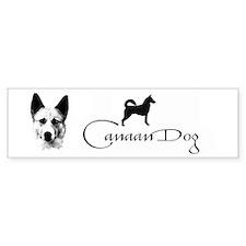 Canaan Dog Bumper Bumper Sticker