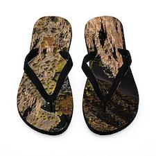 Black Canyon Flip Flops