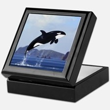 Orca Breaching Keepsake Box