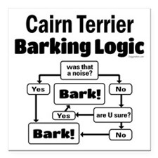 "Cairn Logic Square Car Magnet 3"" x 3"""