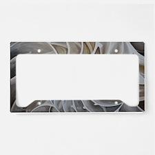 Nautilus Shell License Plate Holder