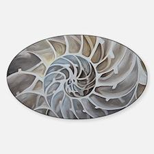 Nautilus Shell Decal