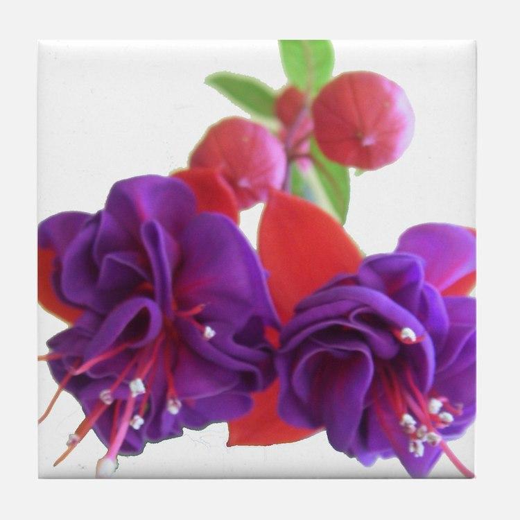 Fuchsia Lucia Tile Coaster
