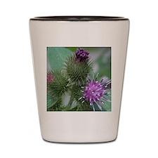 Flowering Tagalongs2 Shot Glass